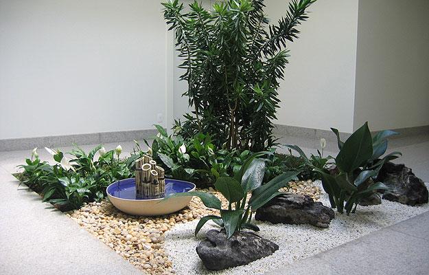 jardins que despoluem