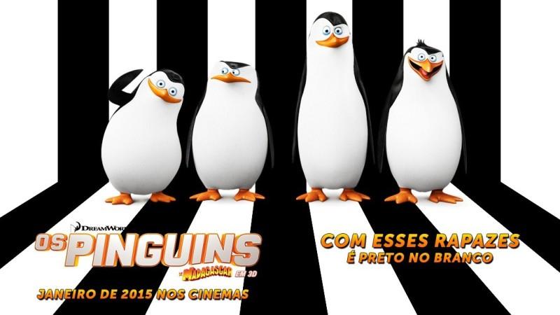 estreia_pinguins